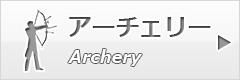 btn_archery