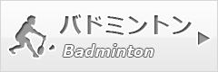 btn_badminton